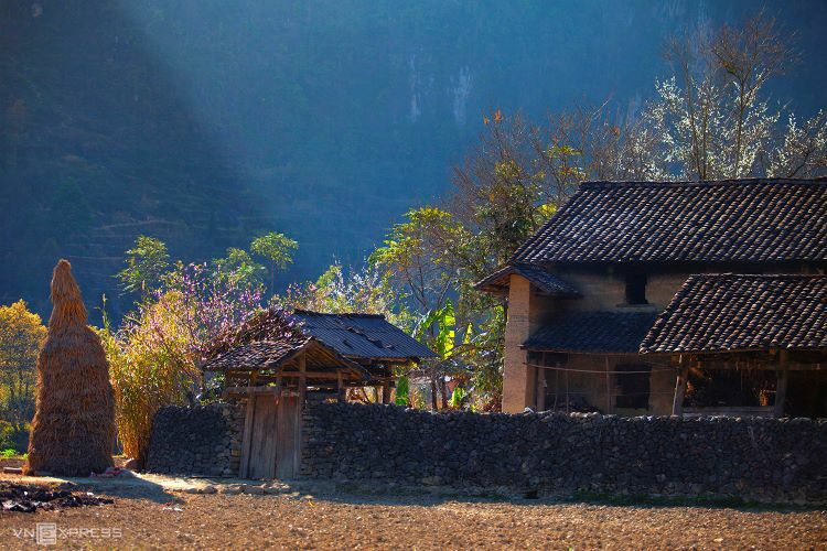 VZN News: Earthen homes featuring yellow walls and stone fences inPho Cao Commune,Ha Giang Province.Photo by Nguyen Huu Thong.