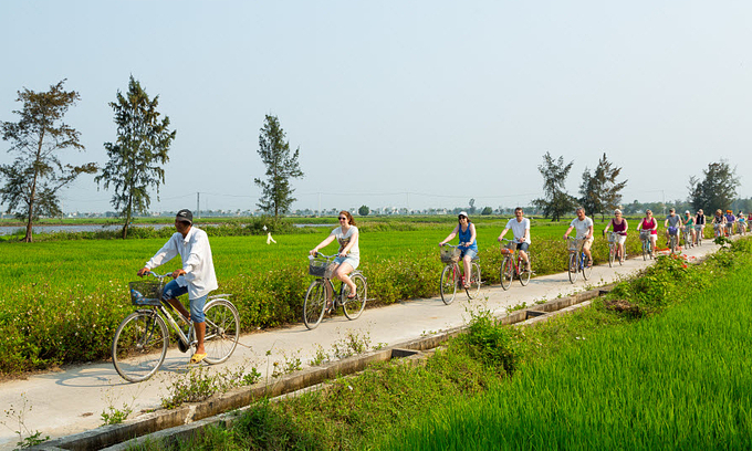 VZN News: Foreign tourists ride bicycles through rice paddies in Hoi An ancient town, central Vietnam. Photo by Shutterstock/Andy Tran.