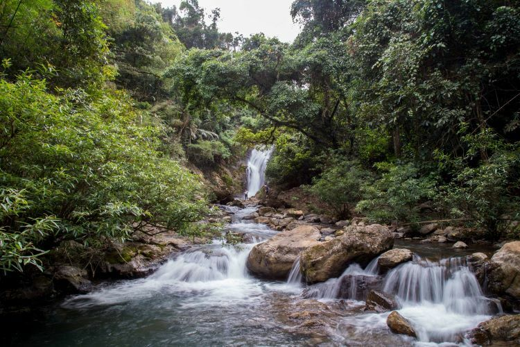 VZN News: The waterfall has a consistent, bountiful flow of water throughout the year. Located in a primary forest, it presents great potential for adventure tourism.