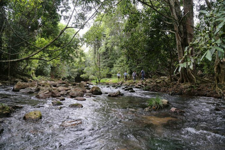 VZN News: A few travelers find their way here to explore independently on a daily basis. Aside from its waterfalls, the area also boasts two caves, one dry and the other wet.