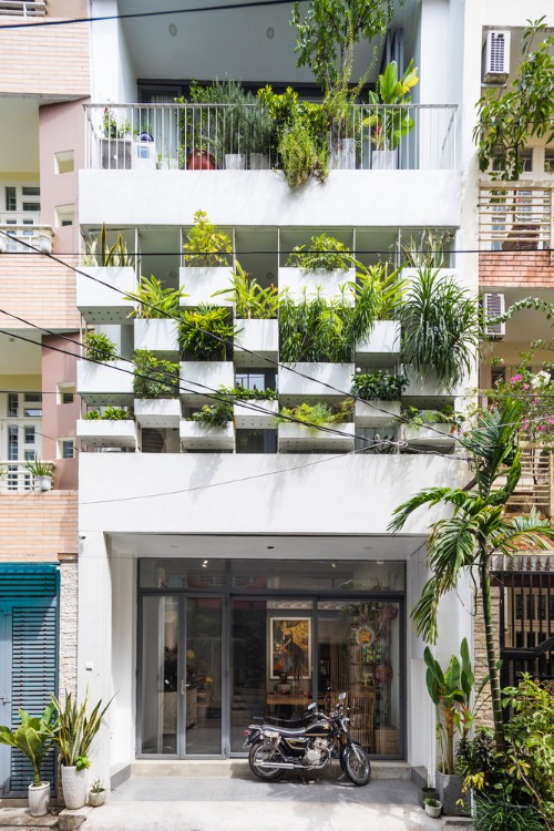 Potted plants are placed on a hanging system of the facade, prevents harsh sunlight and dust in the afternoon and protects homeowners privacy. Thanks to this shield, the interior space is cooler, quieter and more private.