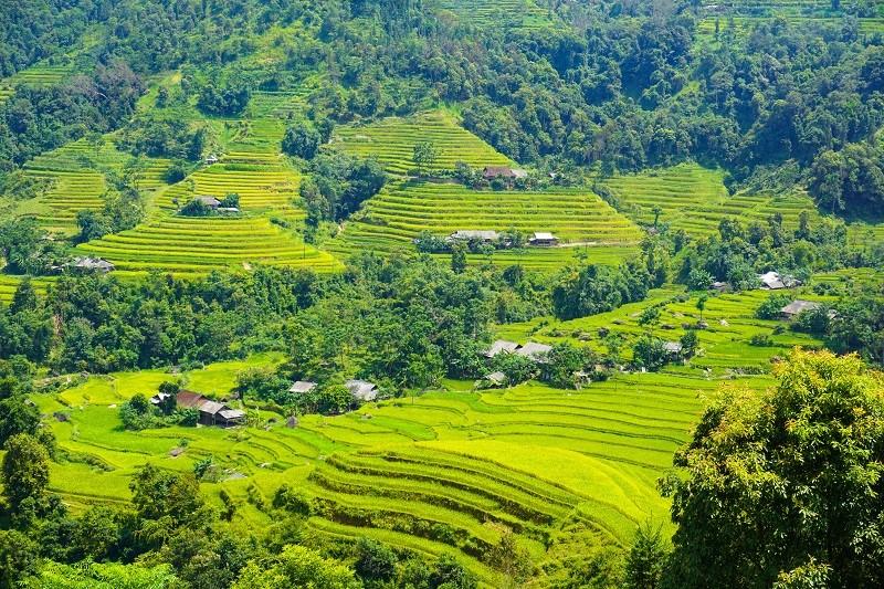 Những thửa ruộng bậc thang qua Nậm Ty, Nậm Dịch_ảnh Xu Kiên (2)