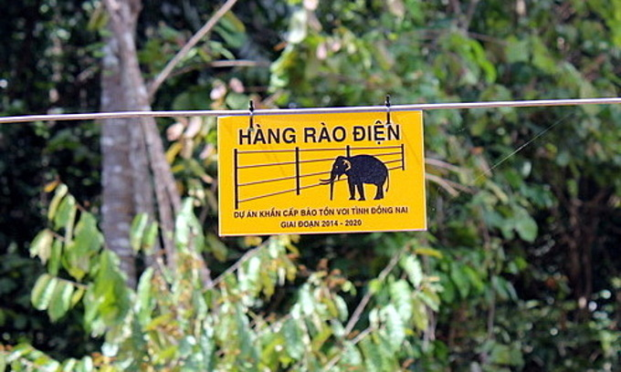 An electric fence separates elephants from fields in Dong Nai Province.