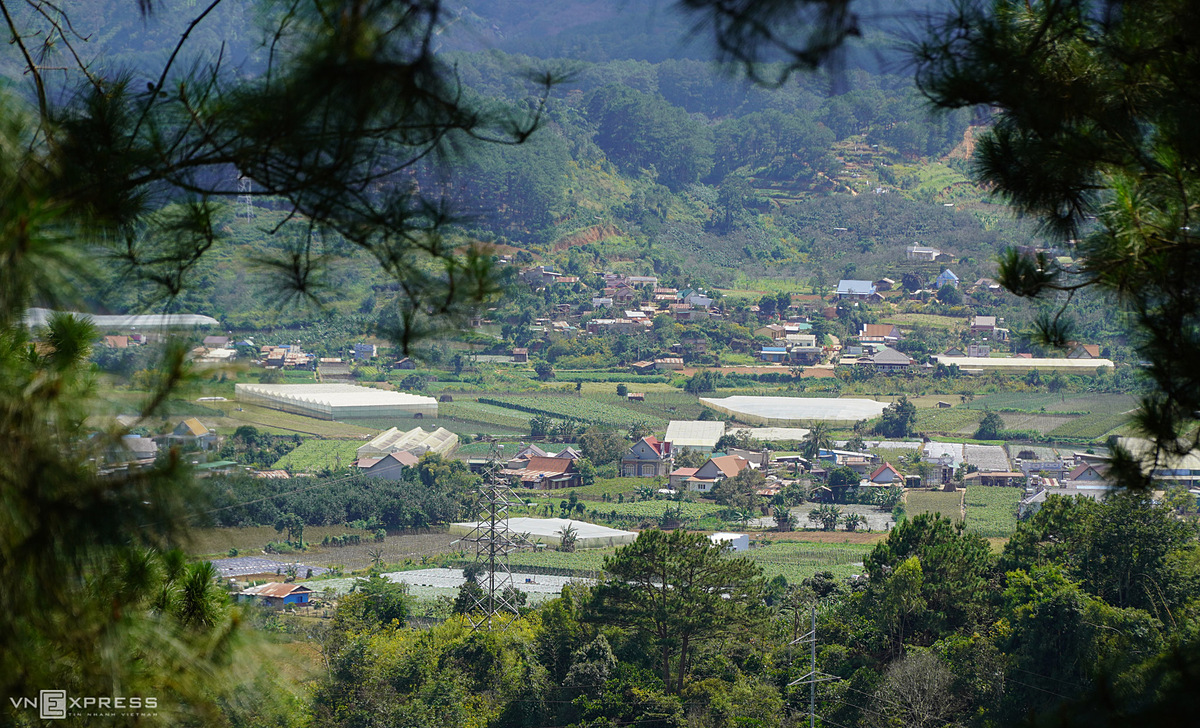 Dran Town in Don Duong District was formed at the same time as Da Lat in the early twentieth century. Dran was named by the French, lying halfway between two long passes, Dran and Ngoan Muc. D'ran locals make a living by farming persimmons, chayote squash, tomatoes, and yardlong beans.