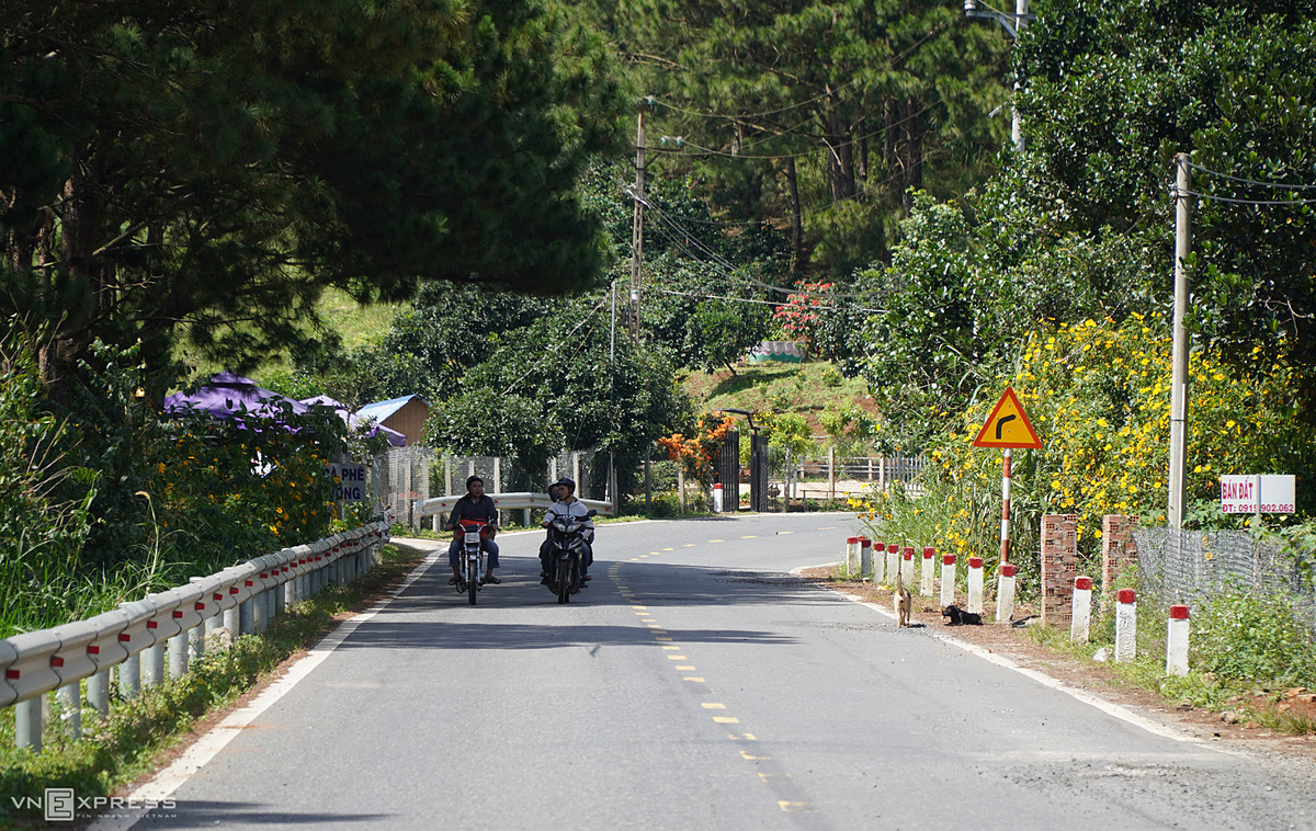 Tourists run on a street in Dran, known for its pristine hills, old pinewood houses and beautiful persimmon gardens. Unlike its sister Da Lat flooded with holiday-goers during the weekends and holidays, Dran turns more tranquil and less crowded.