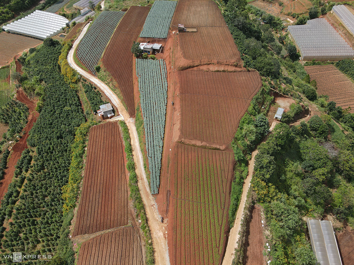 Hills are leveled, forming beautiful terraced fields seen from above.