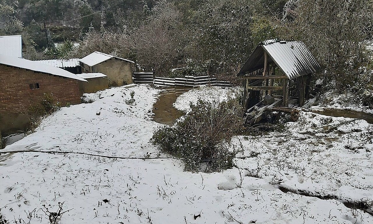 Lao Cais Bat Xat District sees thick snow and frost on January 11, 2021. Photo by Phu Suy Ho.