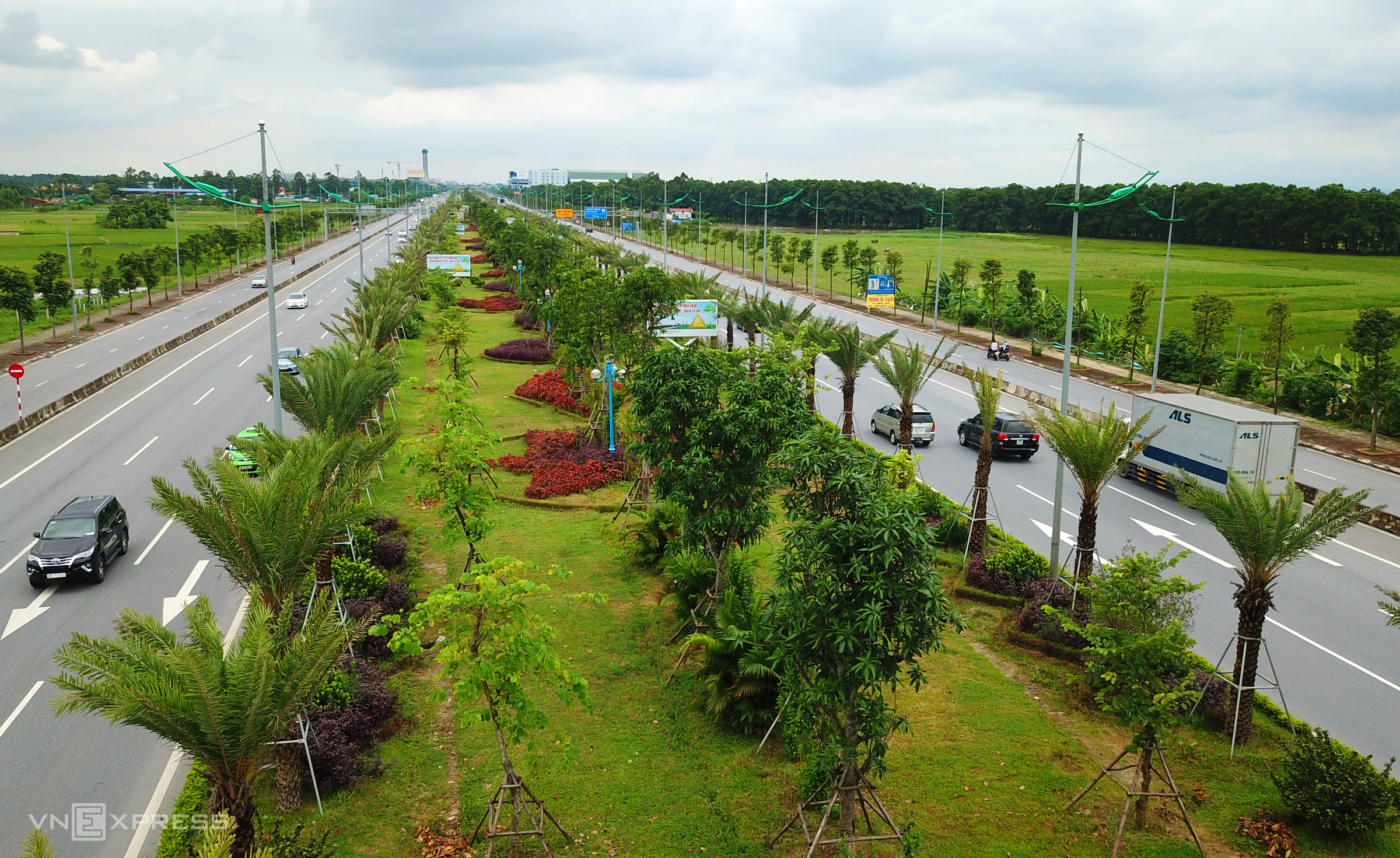 Hanoi streets turn verdant after tree planting program success