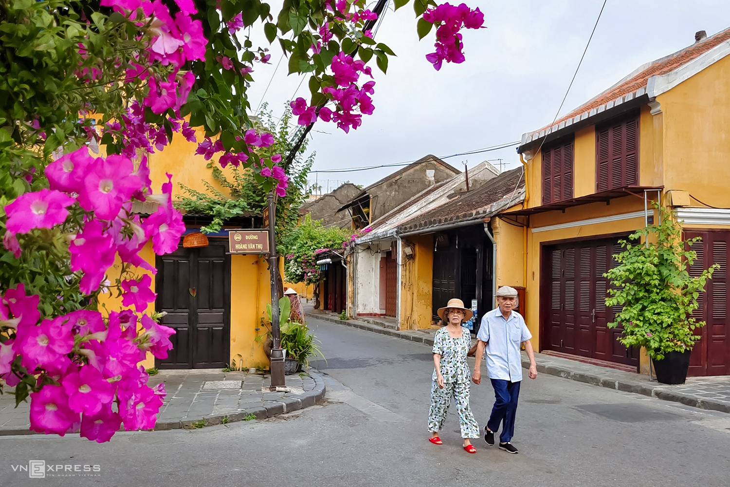 Hoi An flowers extend a summer greeting