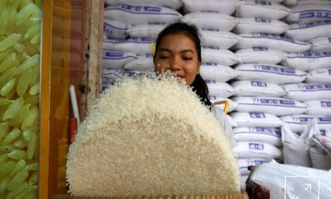 More Cambodian farm produce enters Vietnam
